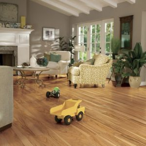 Family Room Floor